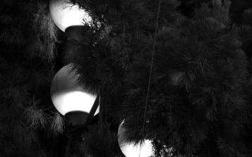 Lumières nocturnes